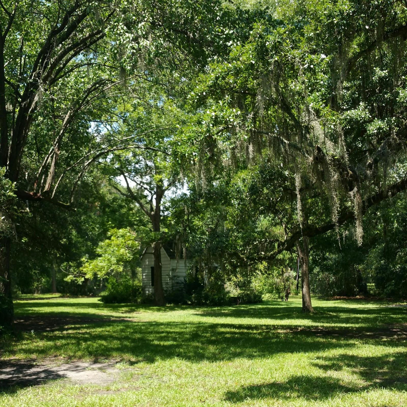 Charming The Birds From The Trees Magnolia Plantation And Gardens Charleston South Carolina