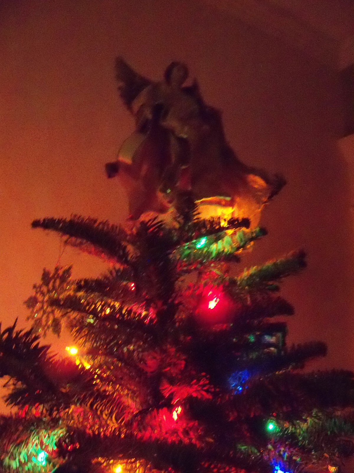 Christmas 2011 - 115_1128.JPG