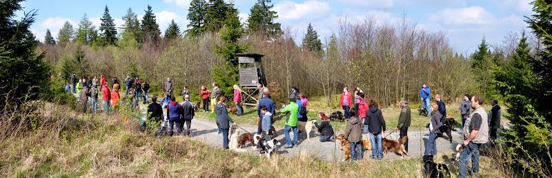 2014-04-13 - Waldführung am kleinen Waldstein (von Uwe Look) - DSC_0466_stitch.JPG