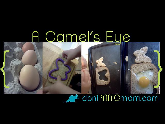 A Camel's Eye