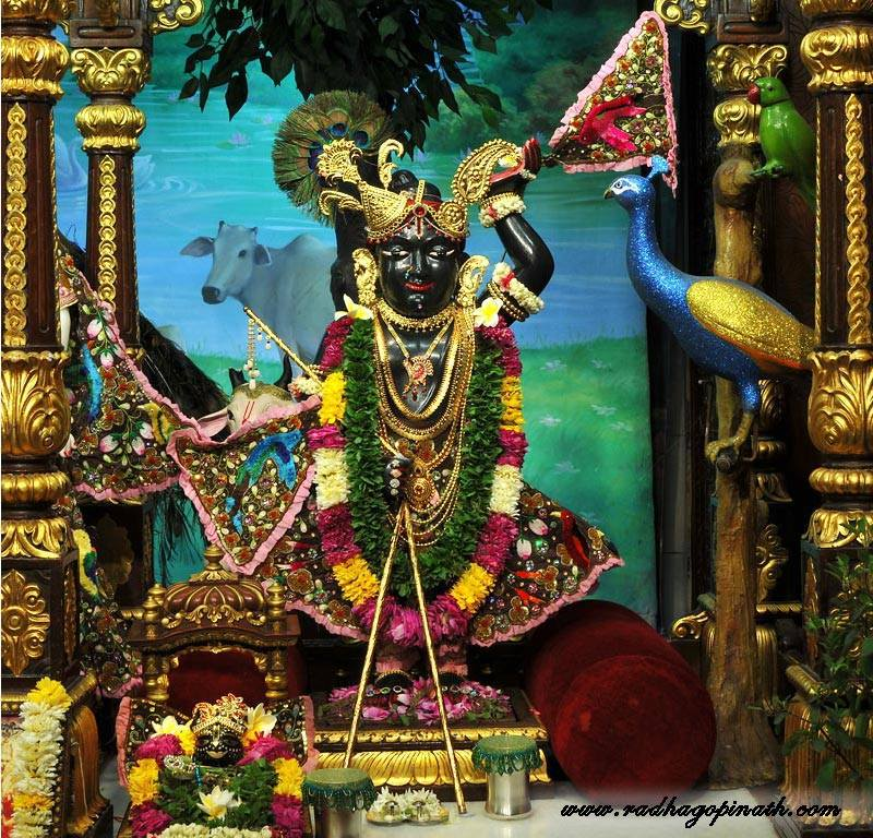 ISKCON Chowpatty Deity Darshan 01 Mar 2016  (5)