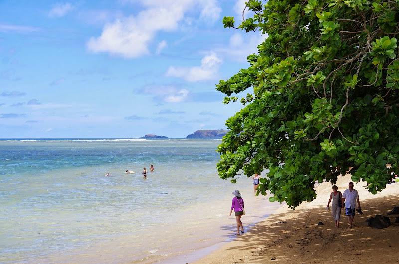 06-25-13 Annini Reef and Kauai North Shore - IMGP9333.JPG