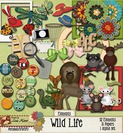 wildlife_03