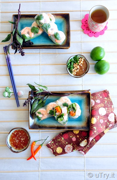 Vietnamese Summer Rolls (Gỏi cuốn) 越式春捲 http://uTry.it