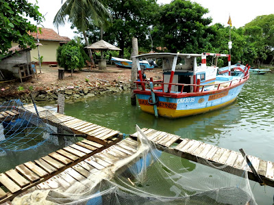 Negombo lagoon 16