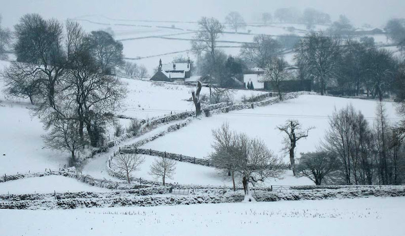 snow2010-12