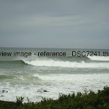 _DSC7241.thumb.jpg