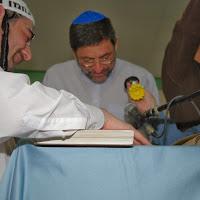 Purim 2008  - 2008-03-20 19.22.11.jpg