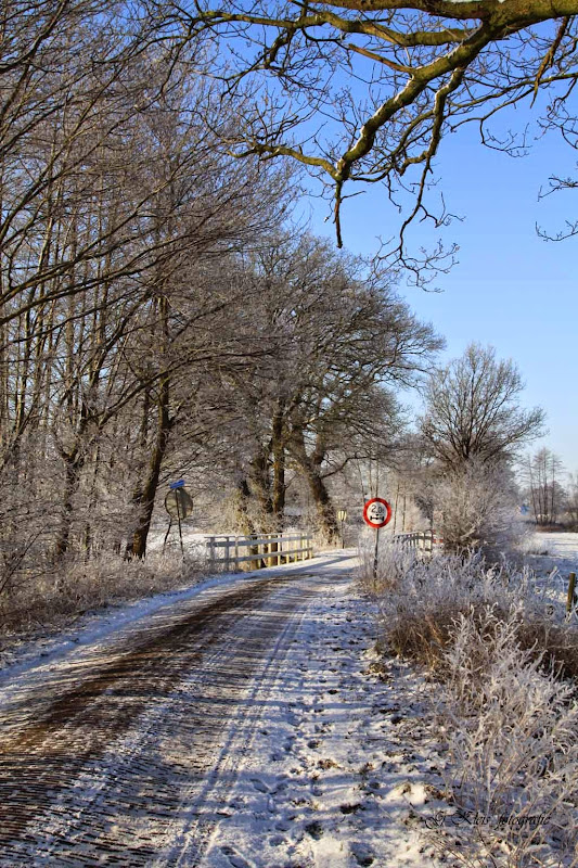 Winter - Winter-017.jpg