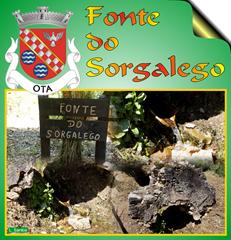 Fonte Sorgalego -  Ota