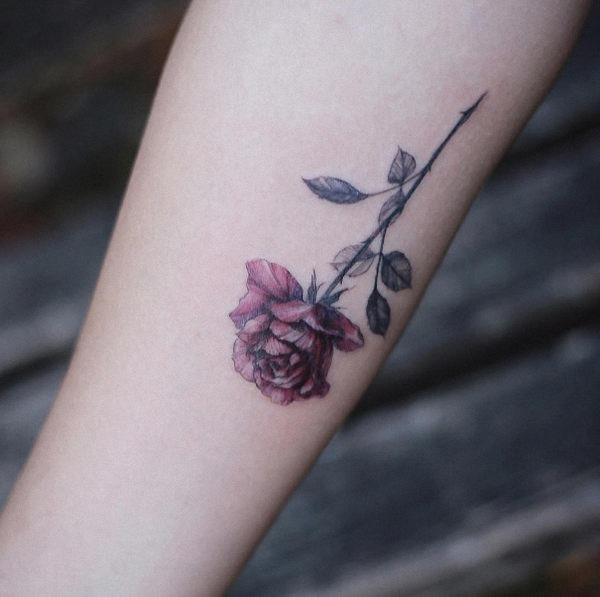 este_lindo_rosa