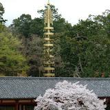 2014 Japan - Dag 8 - mike-P1050725-0259.JPG