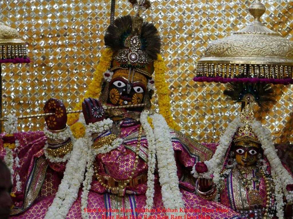 Radha Govind Devji Deity Darshan 30 Mar 2016  (1)