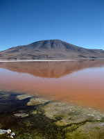 Laguna Colorada, Southwestern Circuit Jeep Tour