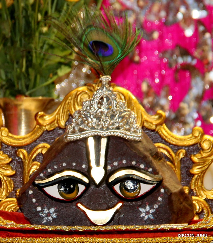 ISKCON Juhu Mangal Deity Darshan on 28th April 2016 (23)