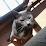jose alberto Terras's profile photo