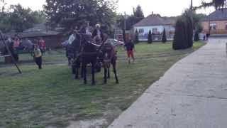 Szüreti felvonulás Jákó 2013.09.21. - visszaérkezik a menet a faluház udvarára