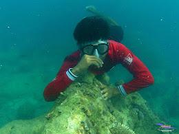 pulau pari 050516 GoPro 64