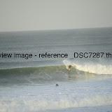 _DSC7287.thumb.jpg