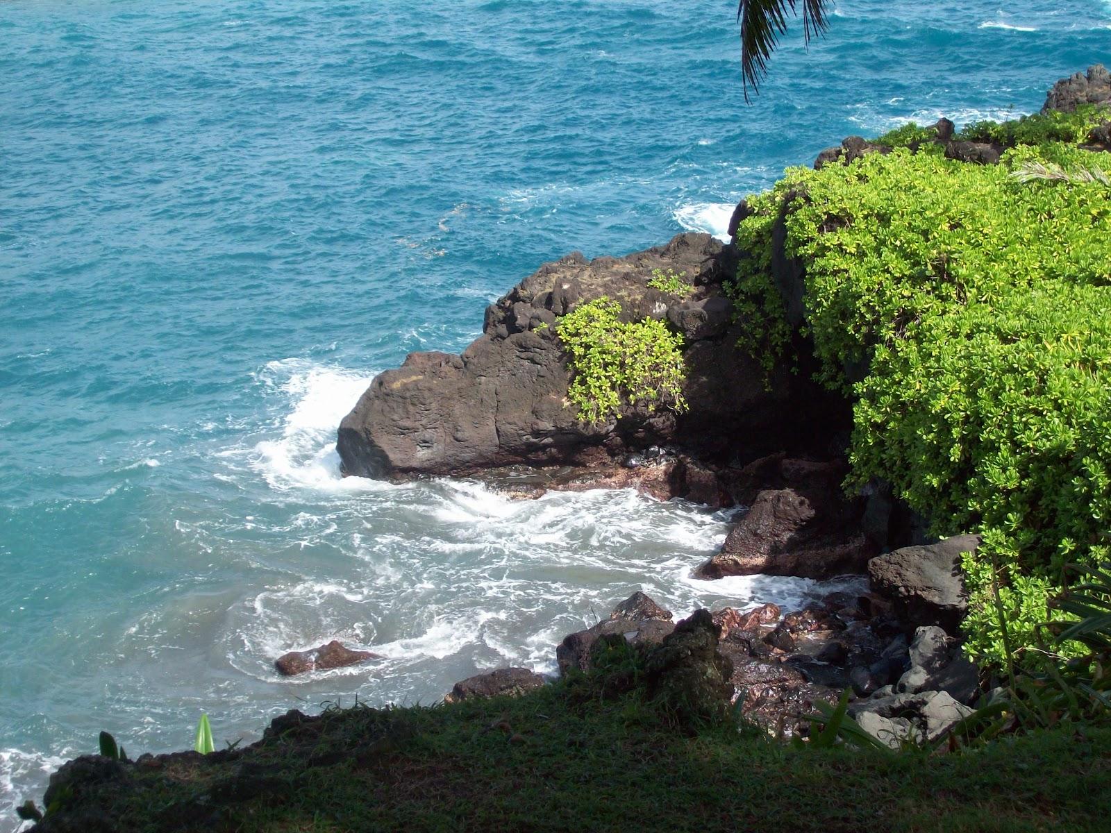 Hawaii Day 5 - 114_1546.JPG