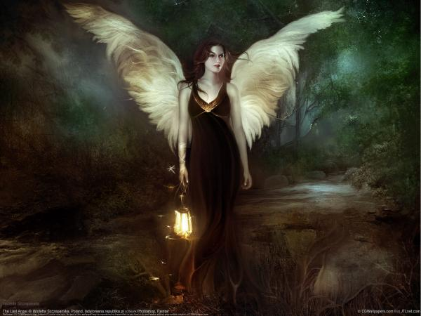 Pretty Angel With Wings, Angels