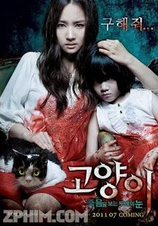 Mắt Mèo Hoang Dại - The Cat (2011) Poster