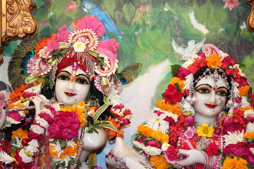 ISKCON Vallabh Vidhyanagar Sringar Deity Darshan 05 Mar 2016 (1)
