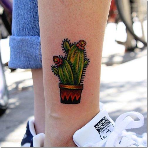 el_cactus_se_adapta_en_cualquier_area_del_cuerpo_y_de_la_super_seguro_sea_cual_sea_el_tamaño