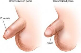 Gillian barberie nude