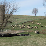 KenKaterberg-Northwestern Iowa Pastoral Scene.JPG