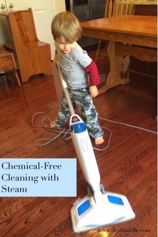 Cleaning With A Steam Mop Diy Danielle