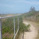Metal railing on the coastal walk in the Wallarah Pennisula (387959)