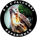E & C FALCONRY EXPERIENCE LTD