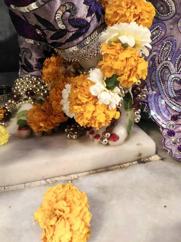 ISKCON Rajkot Deity Darshan 01 Jan 2017 (10)