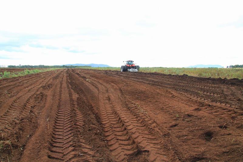 Transformation branchailles en terre agricole - Transformation-de-branchailles-en-terre-agricole-9.jpg