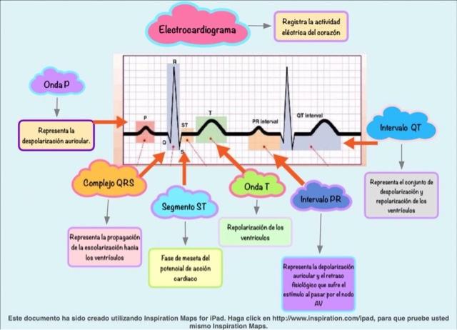 Electrocardiograma on Actividad De Cierre