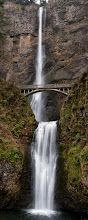 Photo: Multnomah Tall  This is a photo of Multnomah Falls I took when I first got my Nikon D300s. All these years it's been a solid camera and I've enjoyed the heck out of it. It's taken countless trips to the Gorge and many other places around the world and has given me very little trouble along the way. Kudo's to +Nikon USAfor building such a solid camera. I'm always tempted to dump it for a full frame camera but am really in no hurry. And the day that I do switch to a full frame, this camera will stay in the family as my daughter has requested that she inherit it when I'm done with it.  Prints available:http://bit.ly/1lfAnqI  #waterfall  #columbiarivergorge  #oregon  #nikon