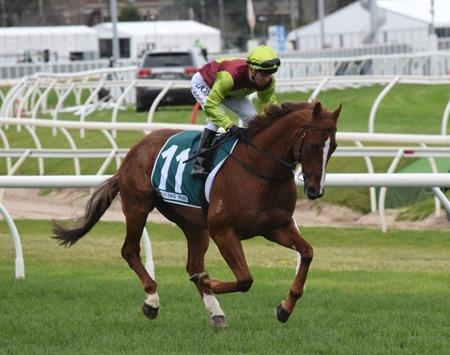 race 7 _bon aurum 1