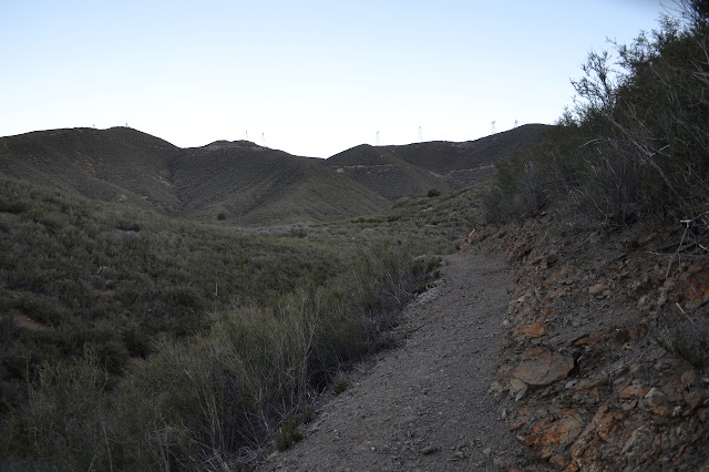 wide, clear trail