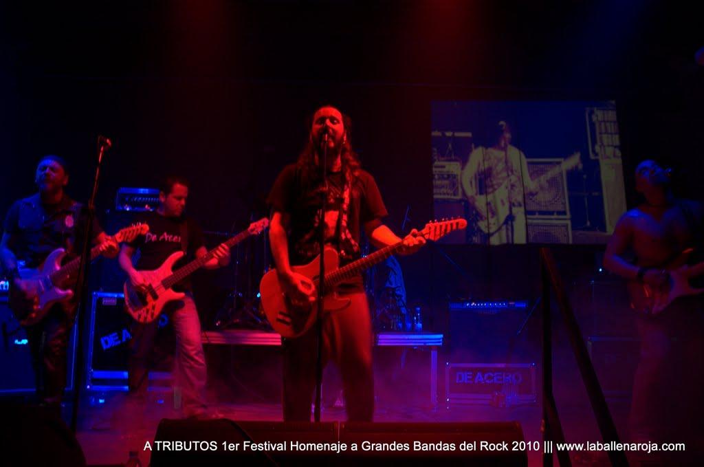 A TRIBUTOS 1er Festival Homenaje a Grandes Bandas del Rock 2010 - DSC_0134.jpg