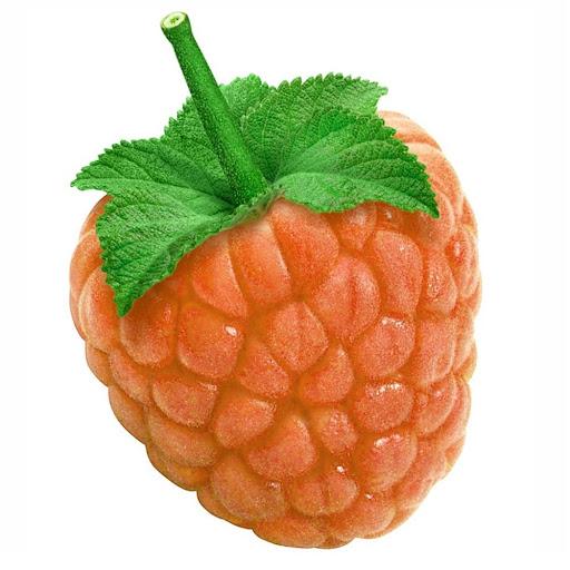 OrangeRAZ