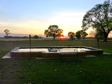 Swimming pool at Carmor Plains