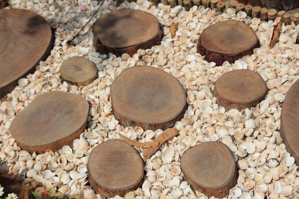 kulit kerang dan kepingan batang pokok