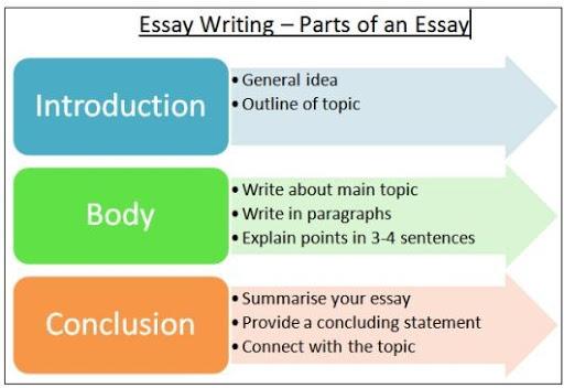www how to write essay writing
