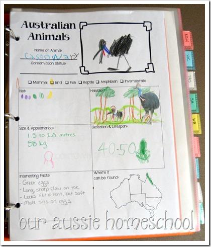 Australian Animal Fact Sheet-Free Printable!