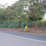 Hawaii Day 6 - 100_7632.JPG