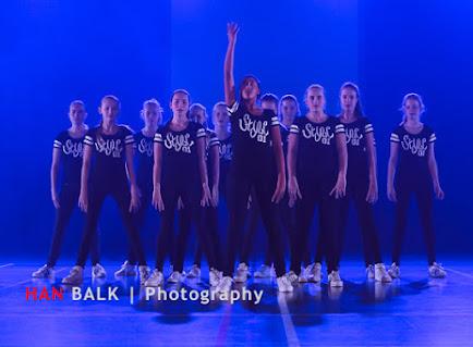 Han Balk Voorster Dansdag 2016-4560-2.jpg