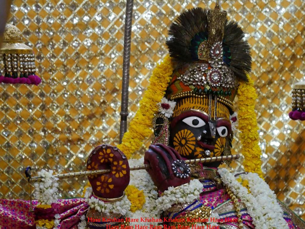 Radha Govind Devji Deity Darshan 30 Mar 2016  (2)
