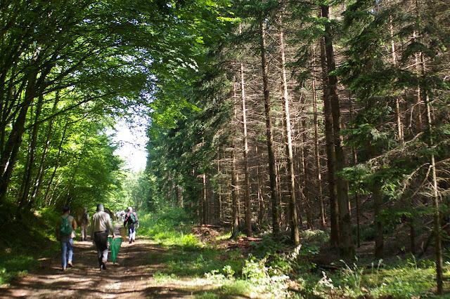 Lépidoptéristes dans la forêt du Val Suzon (Côte d'or), juin 2006. Photo : J.-M. Gayman