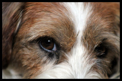 Portrait Sasha 06.08.2015